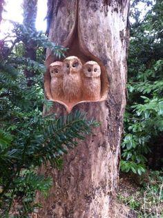 Chainsaw  esculpida três corujas bebê,  por Tommy Craigs