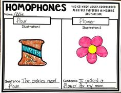 Teaching Homophones #HollieGriffithTeaching #KidsActivities