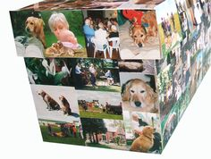 a cardboard coffin decorated with a photograph collage available at Brighton Funeral Directors www.sussexfunerals.com