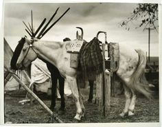 Nez Perce. 1925