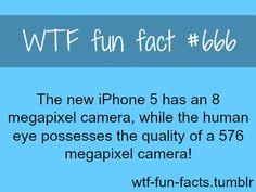 Facts about weird, intersting weird information WTF Facts : funny, interesting & weird facts Wierd Facts, Weird But True, Unusual Facts, Wtf Fun Facts, True Facts, Funny Facts, Crazy Facts, Random Facts, Interesting Facts