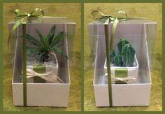 collage-piante-grasse-avorio-e-verde_1
