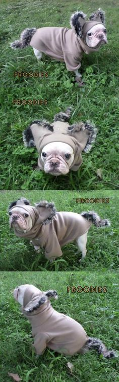 Costumes 52352: French Bulldog Boston Terrier Pug Dog Froodies Hoodies Cosplay Costume Wolf -> BUY IT NOW ONLY: $34.99 on eBay!