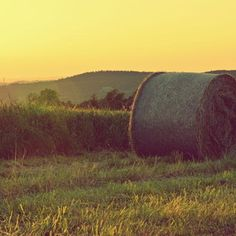 Love this #warm #summer evening shot... it's hard to tell if it is the Czech Republic or central Illinois!