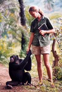 Conservationist Jane Goodall