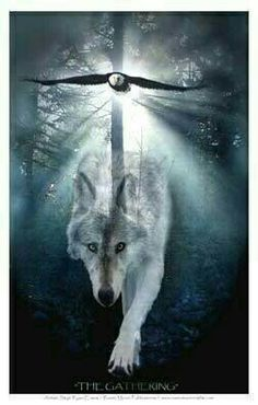 Shop Wildlife Wolf & Eagle Art Print created by RavenSpiritPrints. Personalize it with photos & text or purchase as is! Animal Spirit Guides, Wolf Spirit Animal, Beautiful Creatures, Animals Beautiful, Native American Wolf, American Indians, American Spirit, Eagle Art, Power Animal