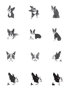 This symbol is designed to represent the Boston Terrier Rescue and communicate their brand attributes. The development of a new mark and branding system ...