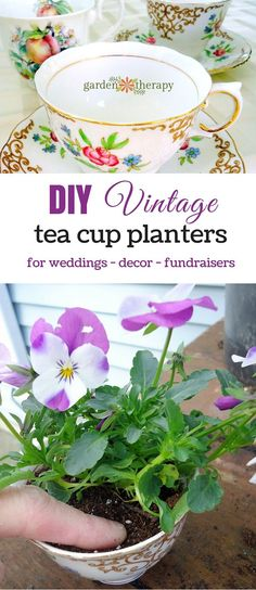 Vintage tea cup planters are stylish and simple to make for weddings, gifts, or as a fundraising tool for a school or garden project. Garden Planters, Garden Art, Garden Design, Garden Club, Roses Garden, Garden Theme, Garden Tools, Diy Wedding Gifts, Diy Gifts