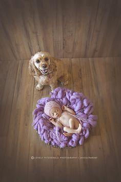 Newborn and Dog pose #newbornpose #newbornphotographer  © Lovely Fitzgerald Photography LLC