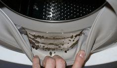 Cómo quitar el moho peligroso y olores desagradables de su lavadora con tan sólo 2 ingredientes