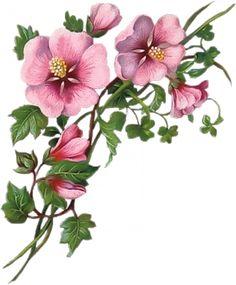 vintage floral •♥•.¸¸.•♥•