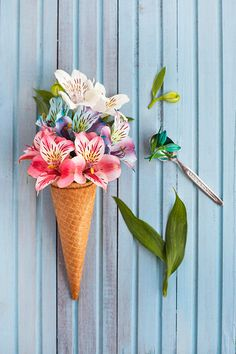 Flower Ice Cream Cone Still Life by Flavia Morlachetti