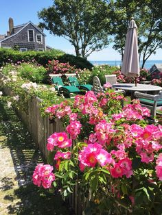Nantucket Style Homes, Nantucket Cottage, Nantucket Wedding, Nantucket Island, Coastal Style, Nantucket Beach, Coastal Gardens, House By The Sea, Home Garden Design