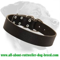 Budget High-quality #Leather #Collar $19.90 | www.all-about-rottweiler-dog-breed.com
