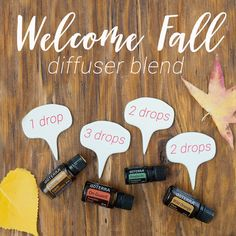 welcome_fall_diffuser_blend