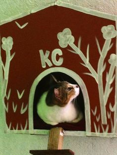 Pinning Prompt #22: I made this little house 6 months ago for KC, my cat. Didn't realize then that it was in marsala, Pantone's color of the year!