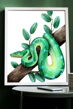 Snake Painting, Snake Drawing, Snake Art, Reptile Decor, Reptile Room, Cool Art Drawings, Easy Drawings, Art Sketches, Emerald Tree Boa