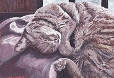 Original painting of a sleeping cat  Cat by MYHIGHSTREETBOUTIQUE