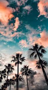 Bildergebnis für california wallpaper iphone