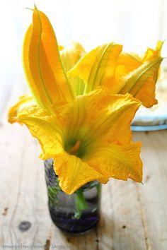 Zucchini Blossoms | Le mie ricette con e senza