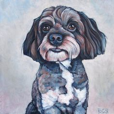 """12"""" x 12"""" Custom Pet Dog Portrait Acrylic Painting on Gallery Wrapped Ready to Hang Canvas of One Dog, Cat, Other. Pet Lover Illustration by Pet Portraits by Bethany, $170.00  Sample shown is Tucker the Miniature Poodle and Schnauzer Mixed Breed"""