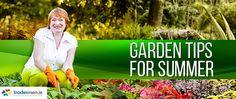 Garden Tips for Summer Garden Tips, Shrubs, Lawn, Summer, Blog, Summer Time, Verano, Grass