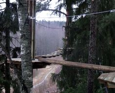 Seikkailupuisto Huippu, vihreä rata. Tree top Adventure Huippu, green couse. Hochseilgarten Huippu, grüne Route.