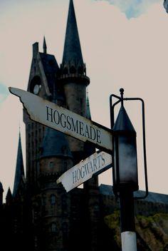 Harry Potter at Universal Orlando Studios, Orlando, Florida. I will go back for this.