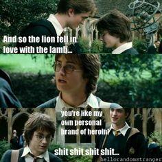 Hahahahaha I'M DYING!
