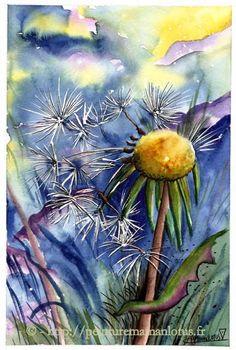 Aquarelle watercolour pencils. Dandelion seed heads. Make a wish then blow.