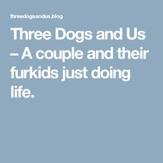 Three Dogs and Us – A couple and their furkids just doing life.