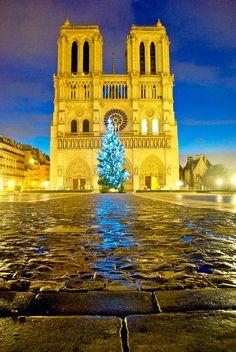 Paris Xmas / Paris Christmas / Paris Noel. Notre Dame.