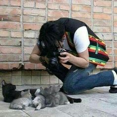 Michael taking pictures of mama cat & kittens.