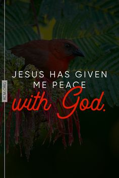 You have perfect peace today!