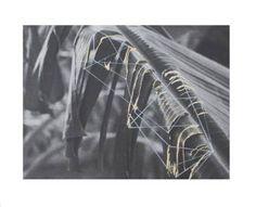 """Saatchi Art Artist Anna Zuber; Collage, """"hidden geometry/ palm tree"""" #art"""