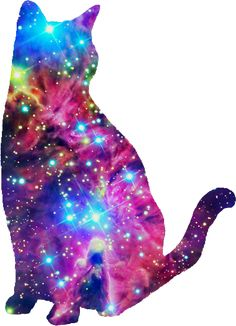 galaxy cat, I don't know why I like this so much haha