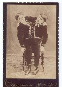 The Tocci Brothers - Siamese Twins