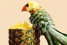 Pina parrot