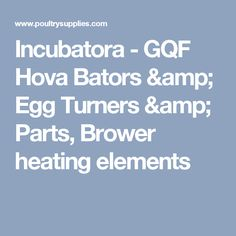 Old Incubators For Sale Have A Wood Stove Type Egg Incubator It Has The Stove Pipes Ideas