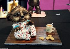 Award-winning Baby Oleg meerkat cake