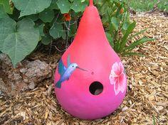 Hummingbird gourd birdhouse by TheAmethystDragonfly, $35.00 USD