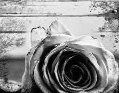 Αποτέλεσμα εικόνας για καλλιτεχνικες φωτογραφιες ασπρομαυρες