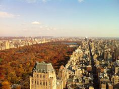 Central Park (looking uptown on the east side) - one of my favorite times of the year in NY!