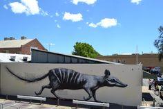 ROA (2012) - Fremantle (Australia)