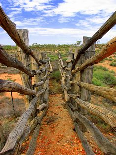 Cattle yard near Orimiston Gorge MacDonnell Ranges Northern Territory Australia by headlessmonk, via Flickr