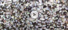 Black Mother of Pearl | ABC Worldwide Stone :: Material Portfolio