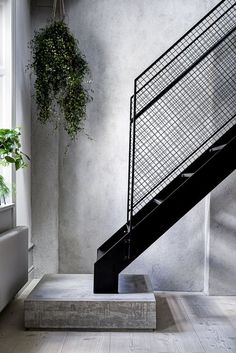 Minimalistic staircase with metal handrail and concrete flooring.