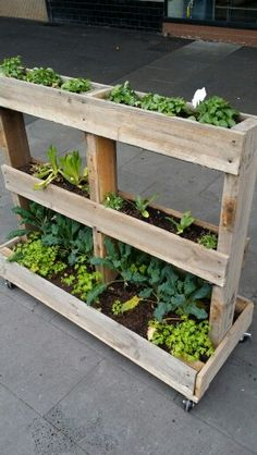 Pellets - New Ideas Herb Garden Pallet, Diy Herb Garden, Vertical Garden Diy, Pallets Garden, Indoor Garden, Outdoor Gardens, Garden Bed, Balcony Garden, Backyard Planters