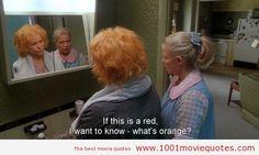 Movie Quotes | 1001 Movie Quotes