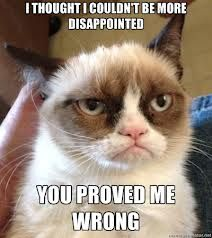 Grumpy Cat - Disappointed